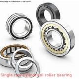 NF38/630 Single row cylindrical roller bearings